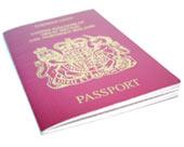 The Visa Process